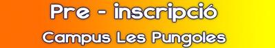 mini banner web plana pungoles